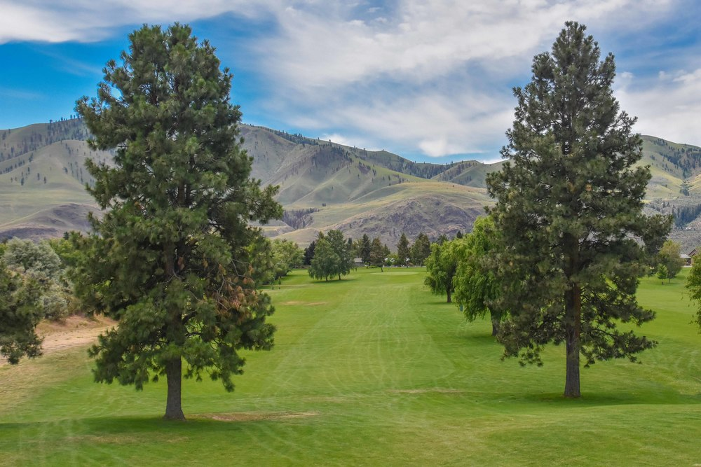 Lake Chelan Golf Club1-9.jpg