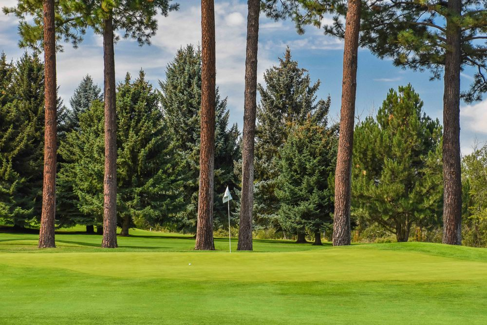 Kalispell Golf Club1-16.jpg