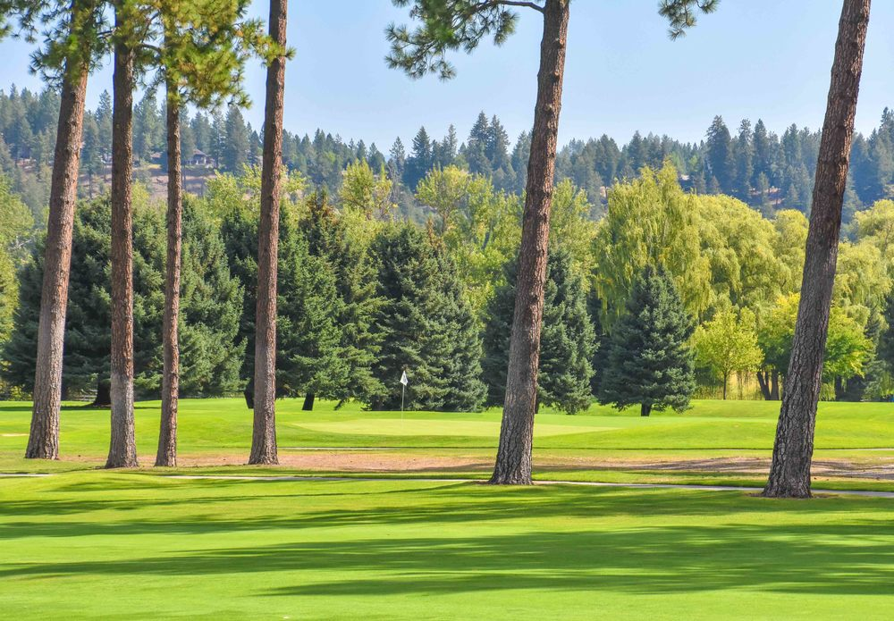 Kalispell Golf Club1-3.jpg