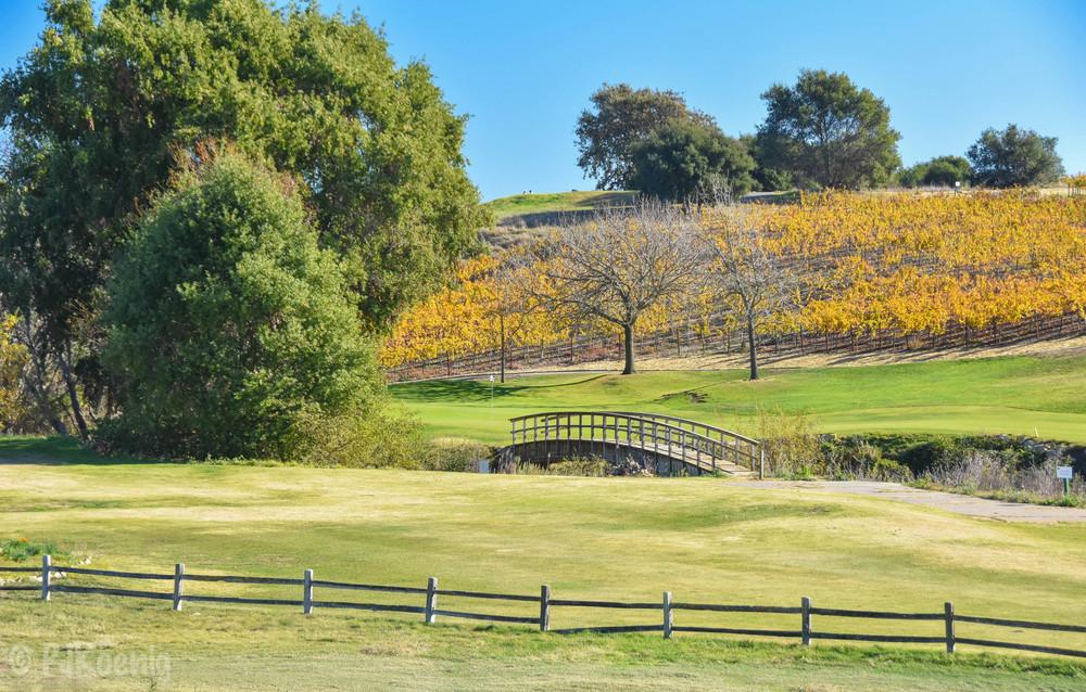 Chardonnay Golf Club1-3.jpg