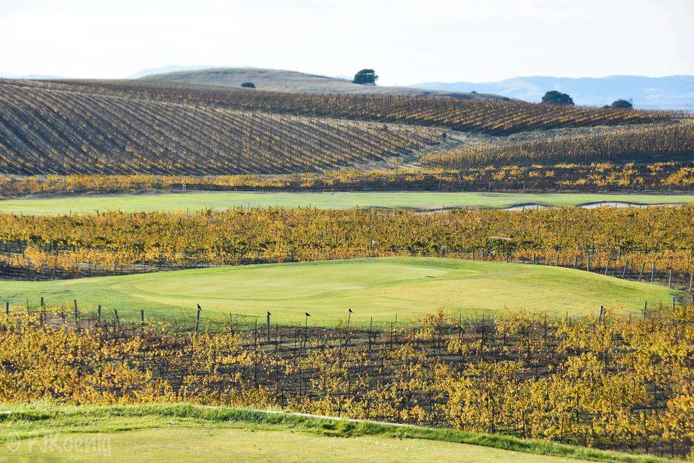 Chardonnay Golf Club1-15.jpg