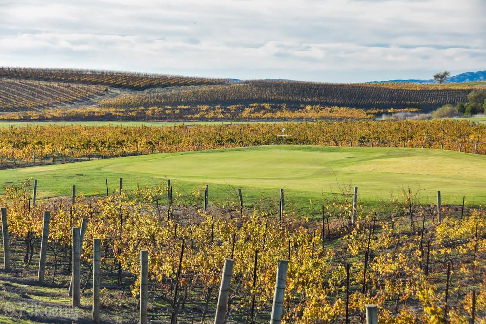Chardonnay Golf Club1-17.jpg
