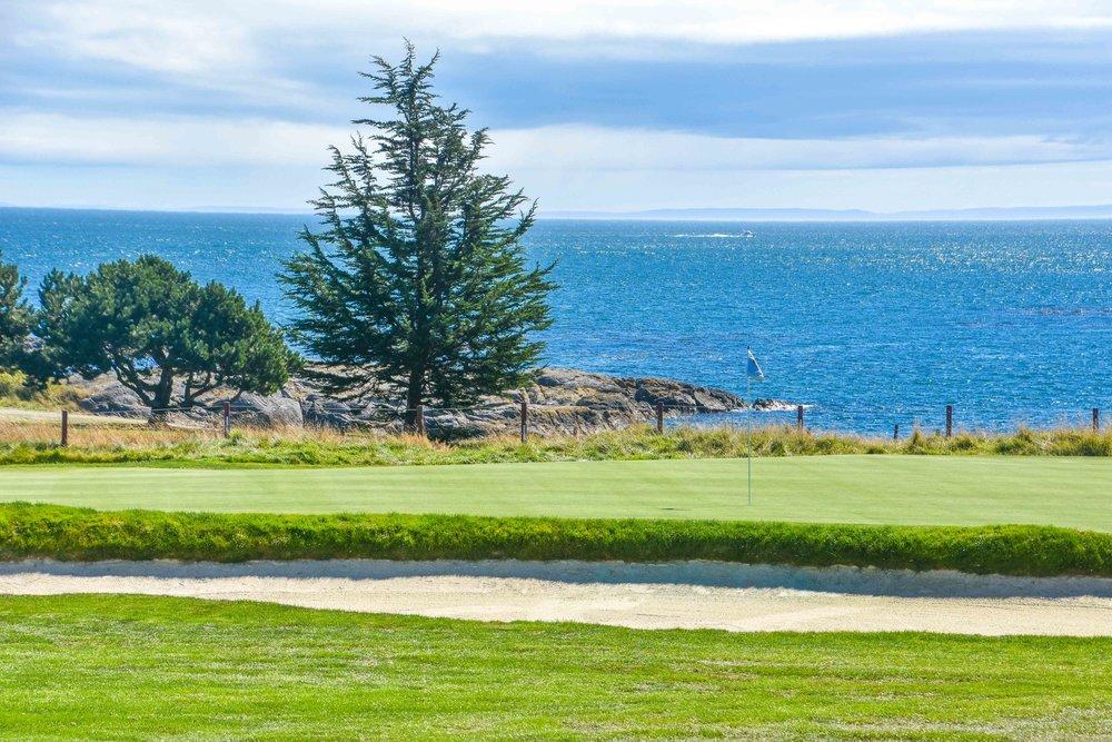 Victoria Golf Club1-7 (1).jpg