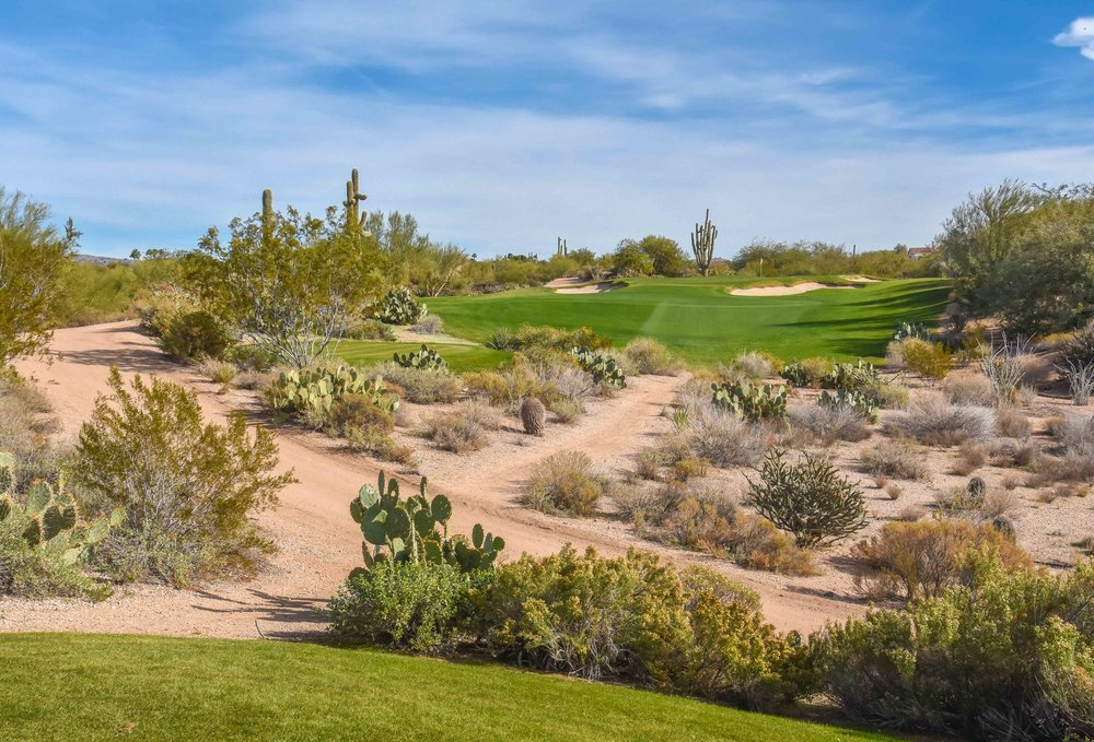 Desert Forest Golf Club1-60.jpg