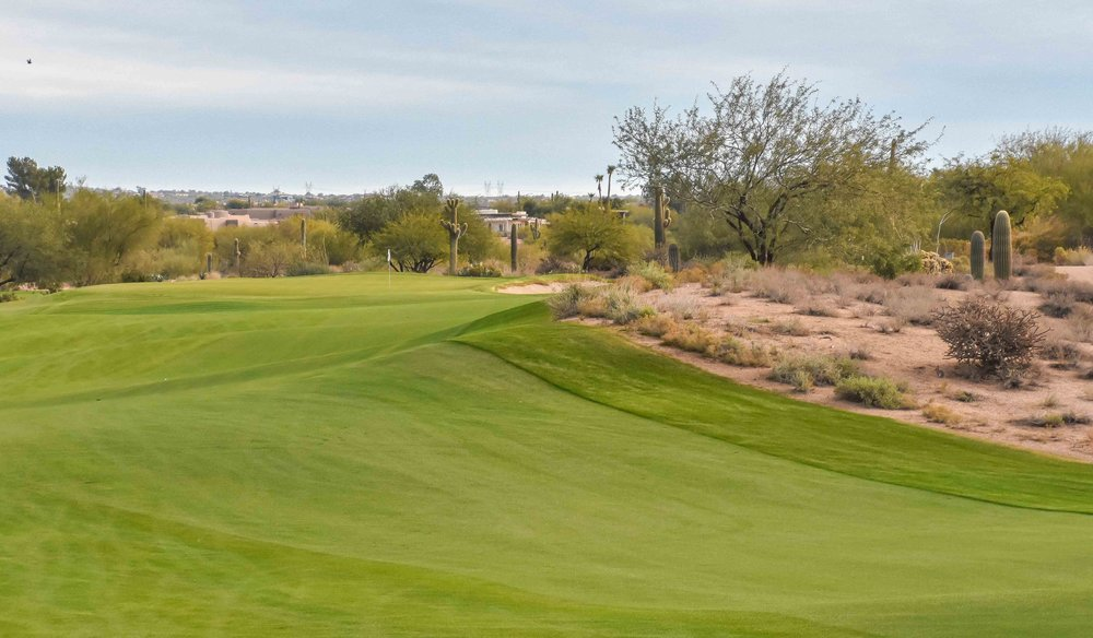 Desert Forest Golf Club1-5.jpg