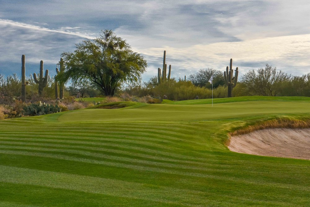 Desert Forest Golf Club1-2.jpg