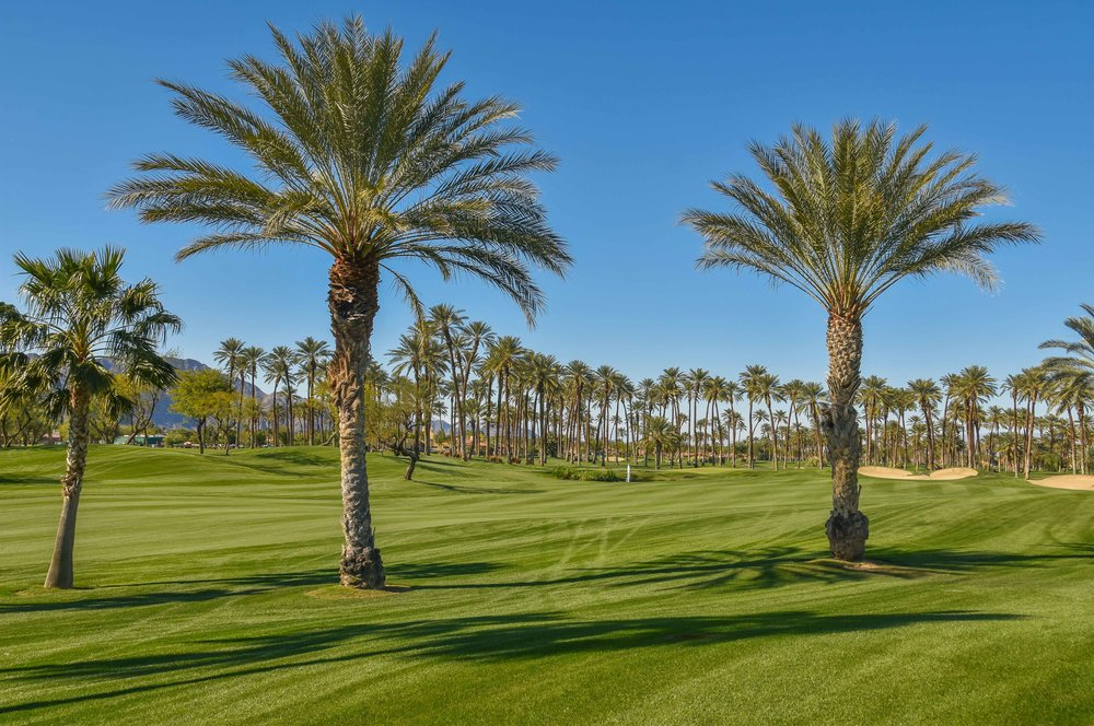 The Palms1-8.jpg