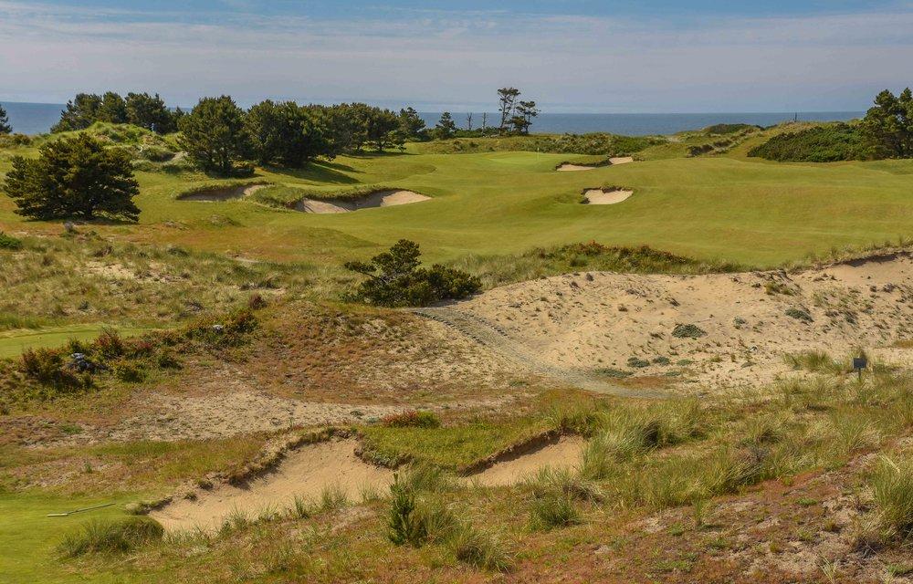 Pacific Dunes1-4.jpg