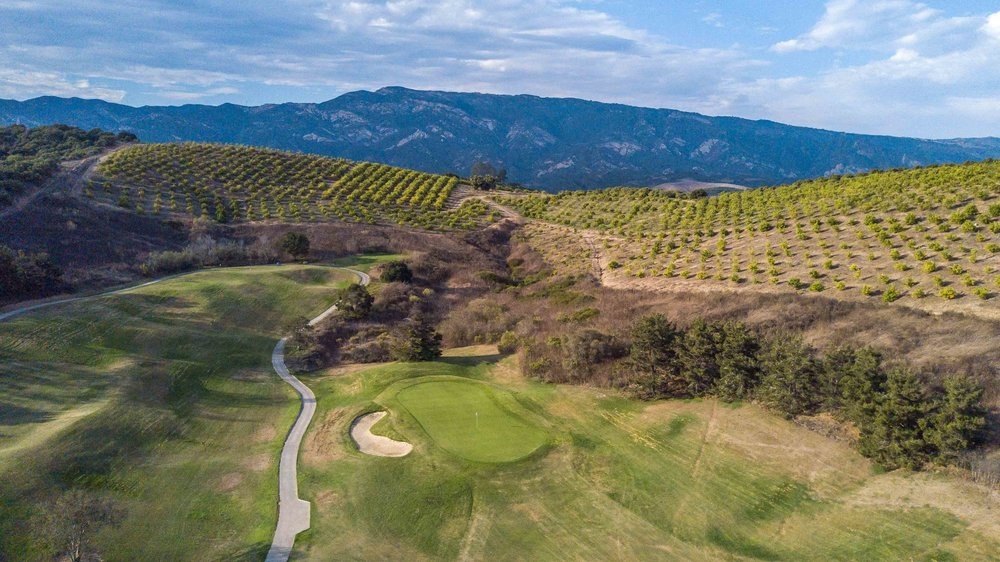 A view of the 10th hole at Glen Annie with lemon trees in the backdrop.