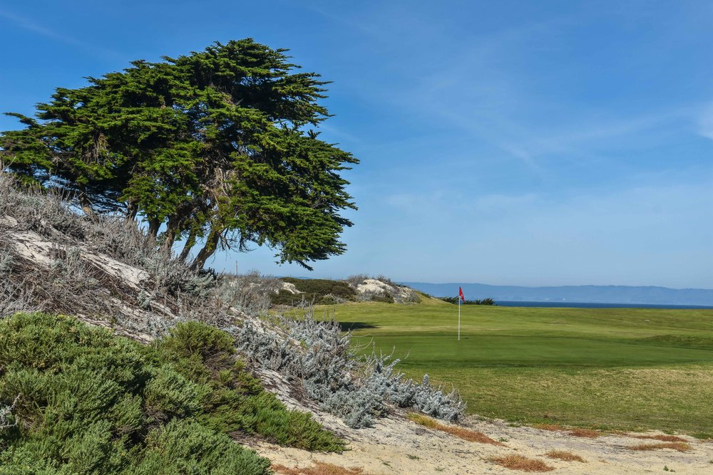 Pacific Grove Golf Links1-32.jpg