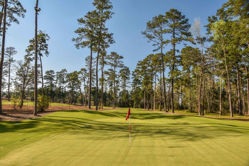 Bluejack National1-84.jpg