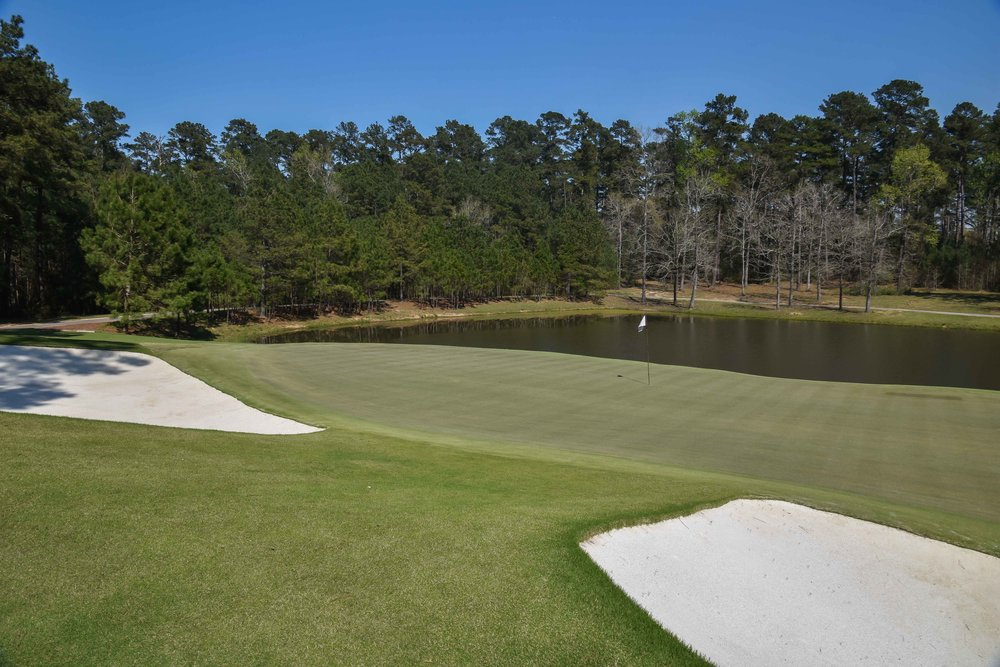 Bluejack National1-60.jpg