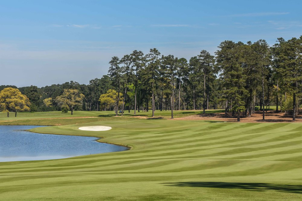 Bluejack National1-33.jpg
