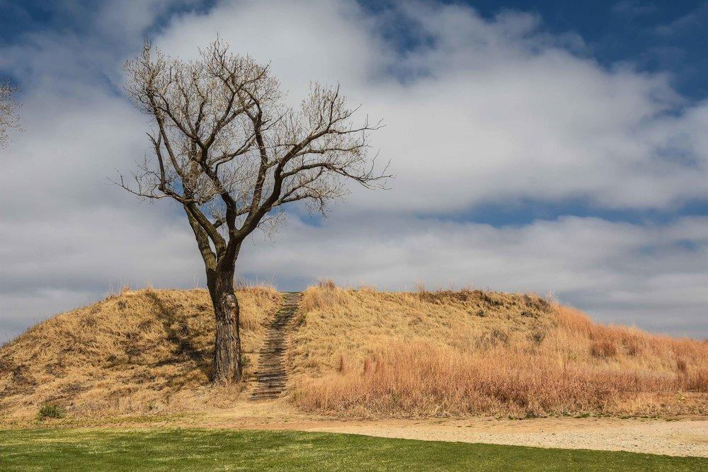 Prairie Dunes1-121.jpg
