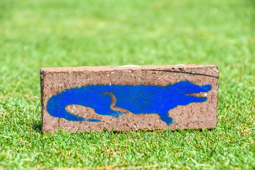 One of my favorite tee markers, that's a gator with a golf ball in his mouth.