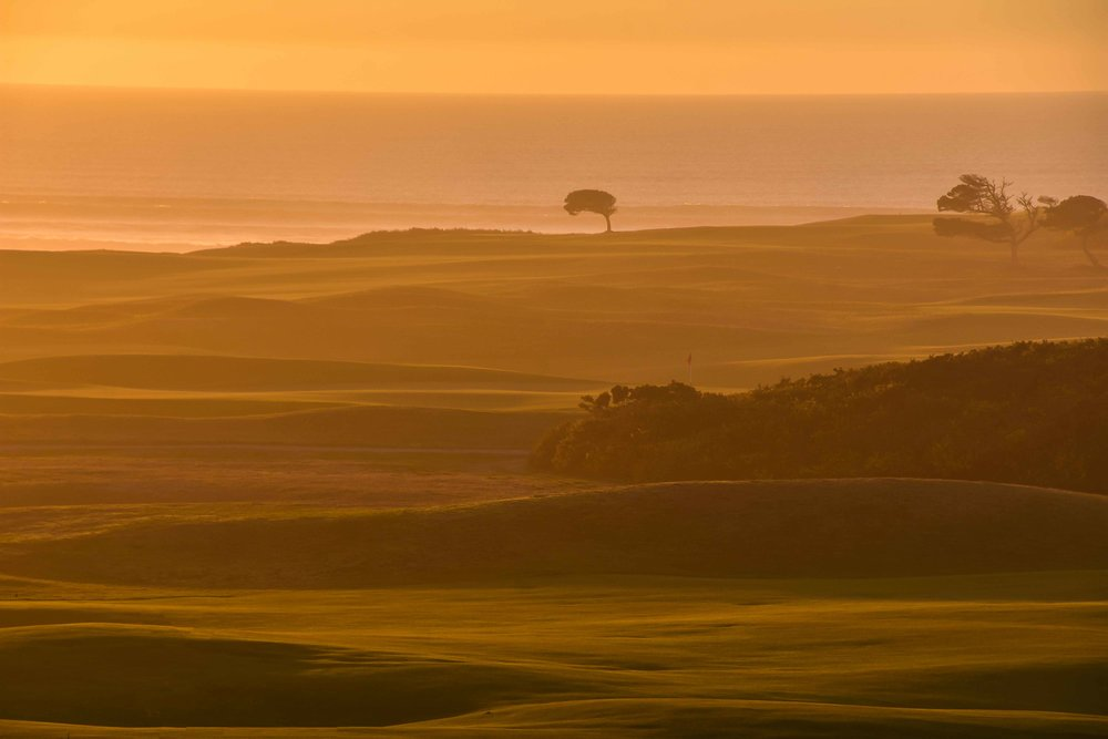 The view across Bandon Dunes from Bandon Preserve