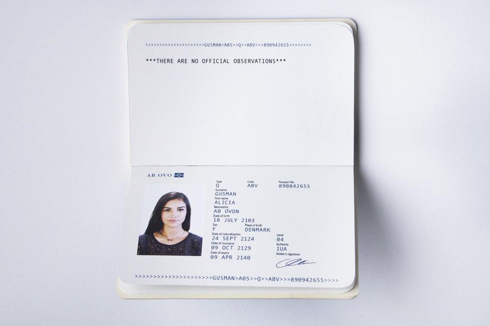 passport3B.jpg