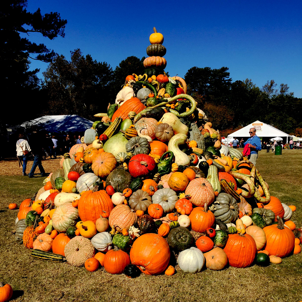 This massive tower of pumpkins was smack in the center of field – and everyone flocked to take pictures!
