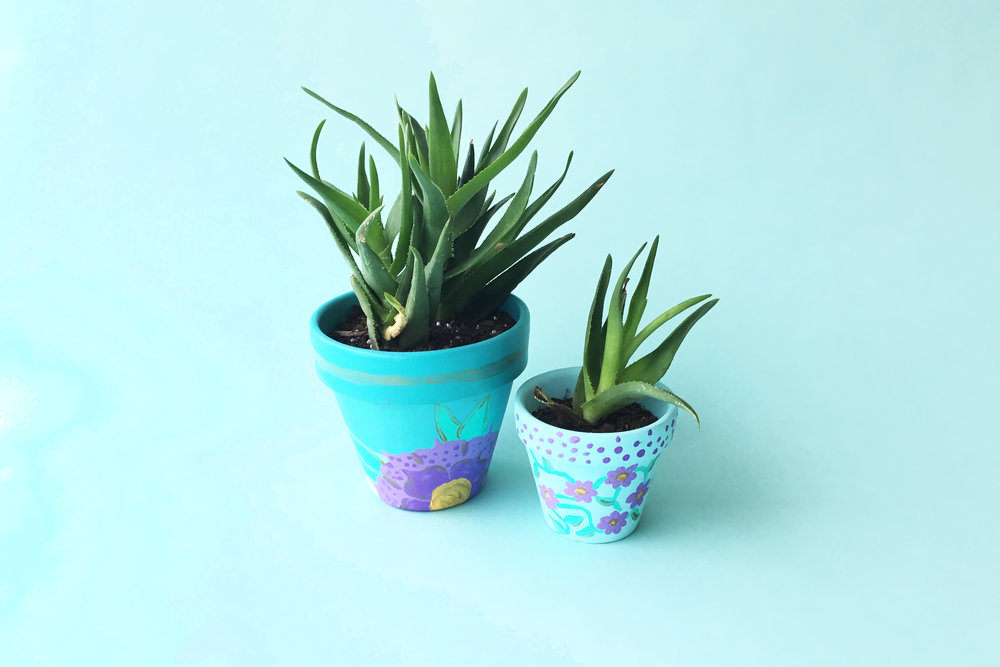 Paint & Plant.jpg