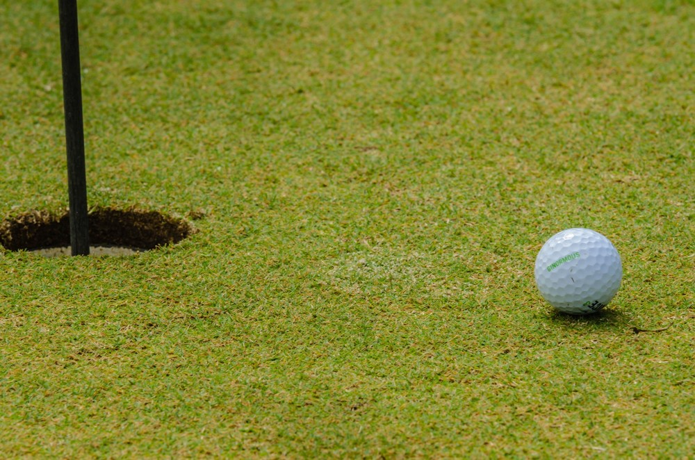 Golf Ball Next To Hole by   alex grichenko