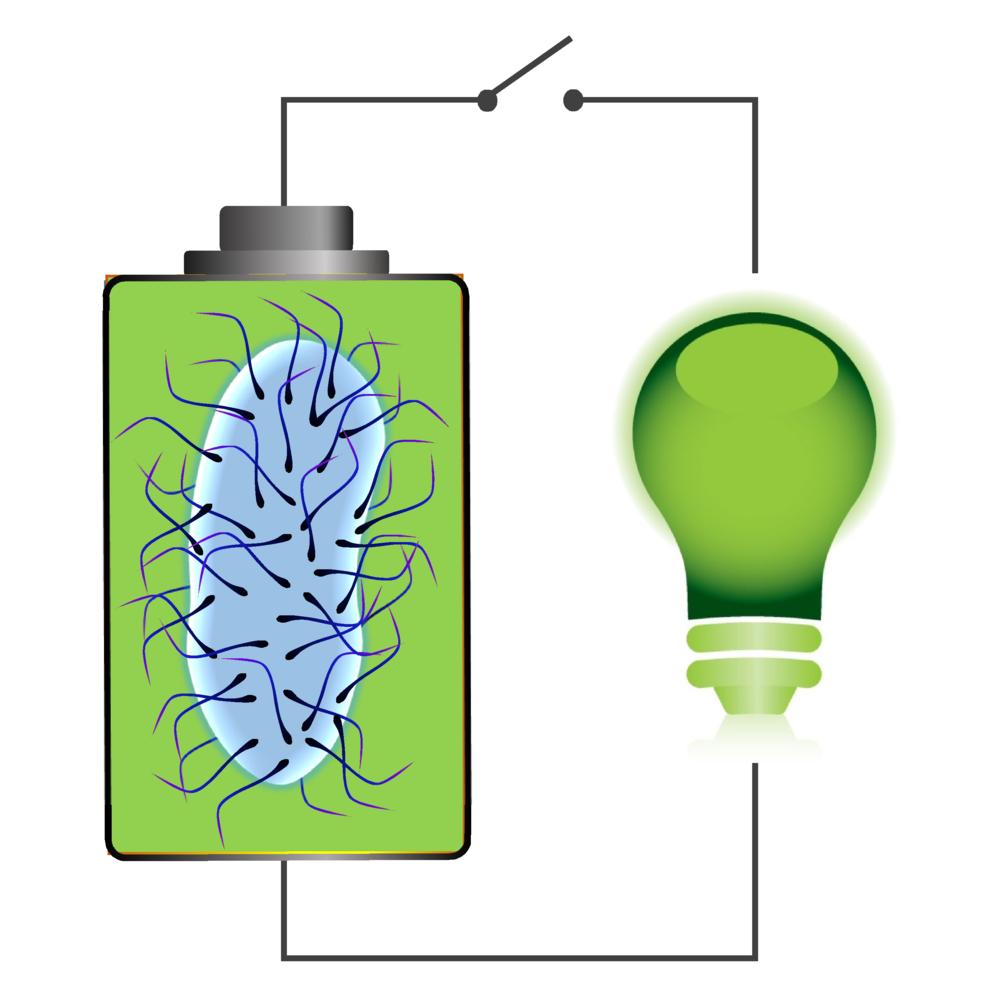 biobattery_sq.png
