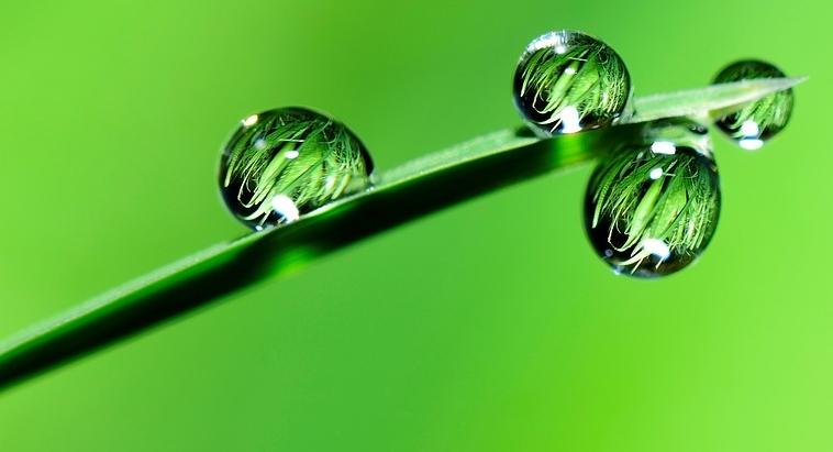 water-2986837_960_720.jpg