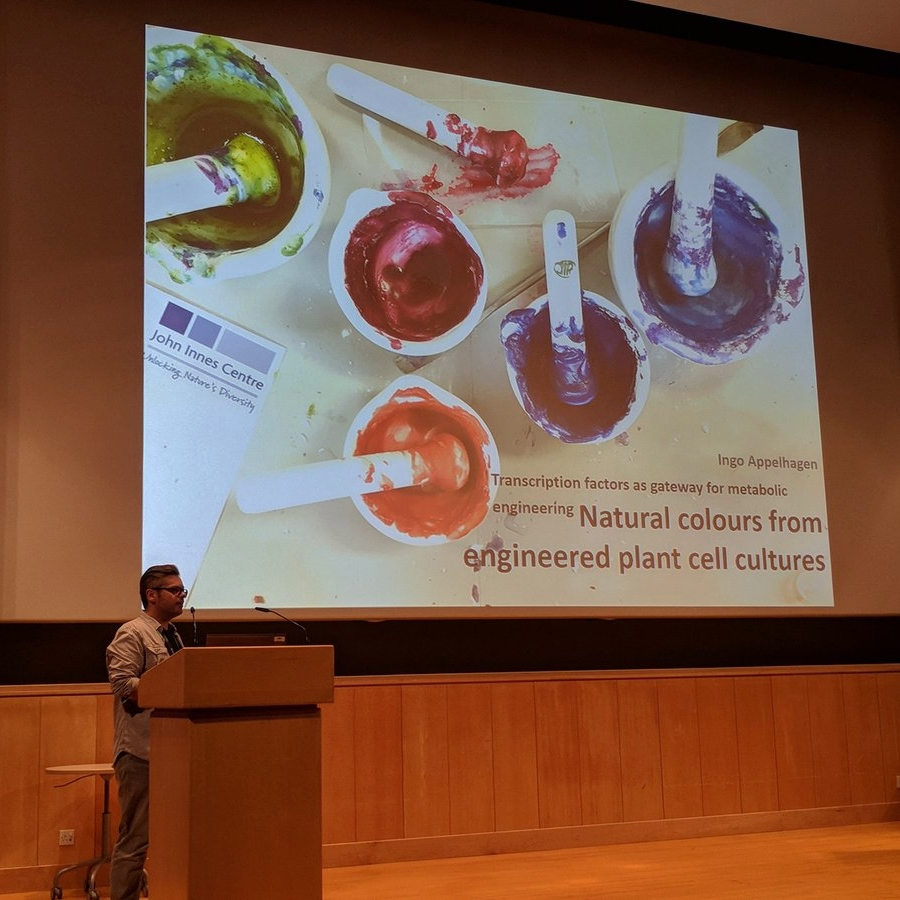 OpenPlant post-doc Ingo Appelhagen presents his work on anthocyanin pigment production in plant cell cultures.