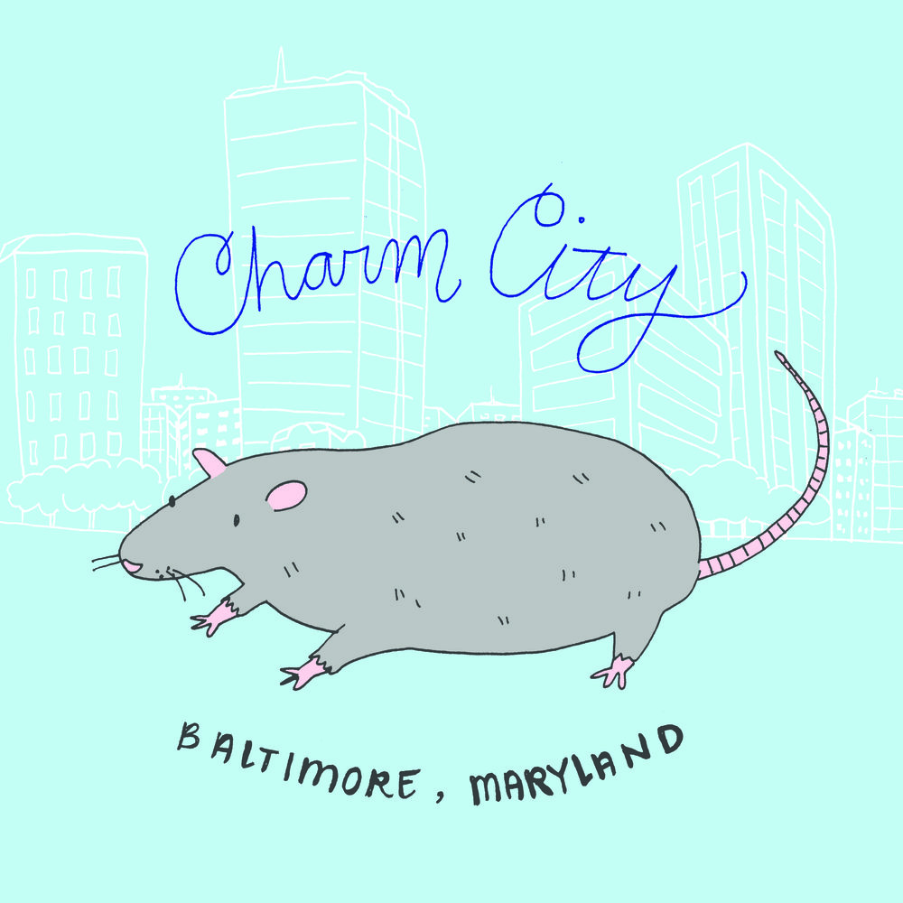 Baltimore Rat for Caravanserai