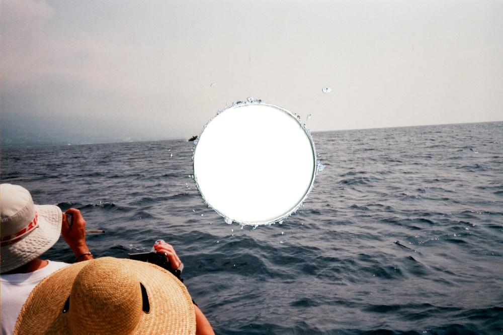 Punctum-whale.jpg