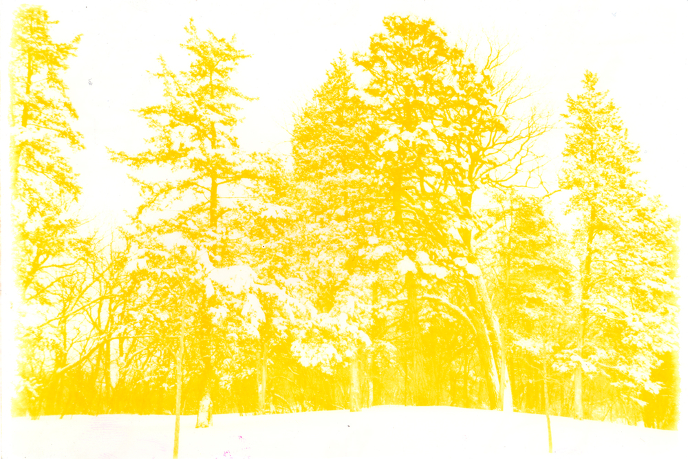 sunburn36.jpg