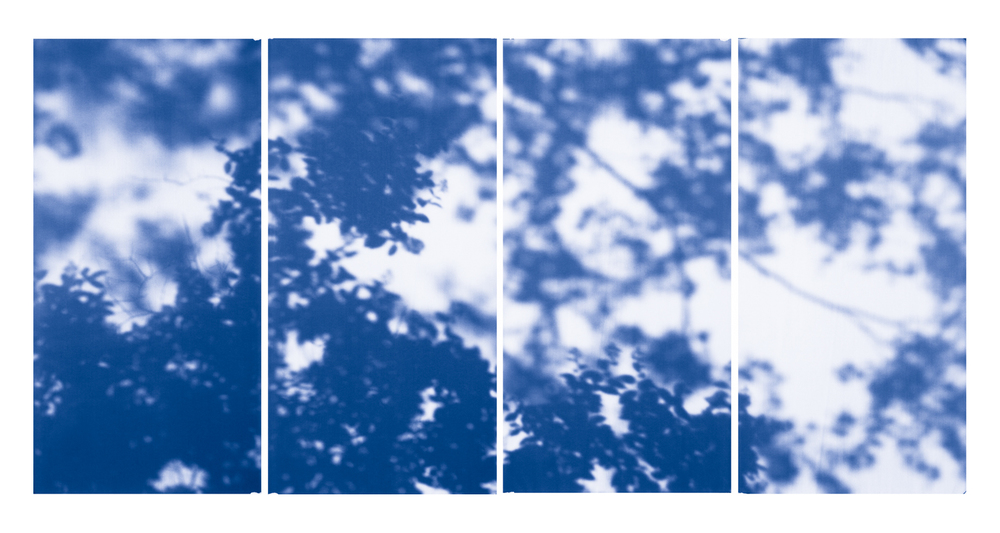 Blue Line of Woods #1134, 2012