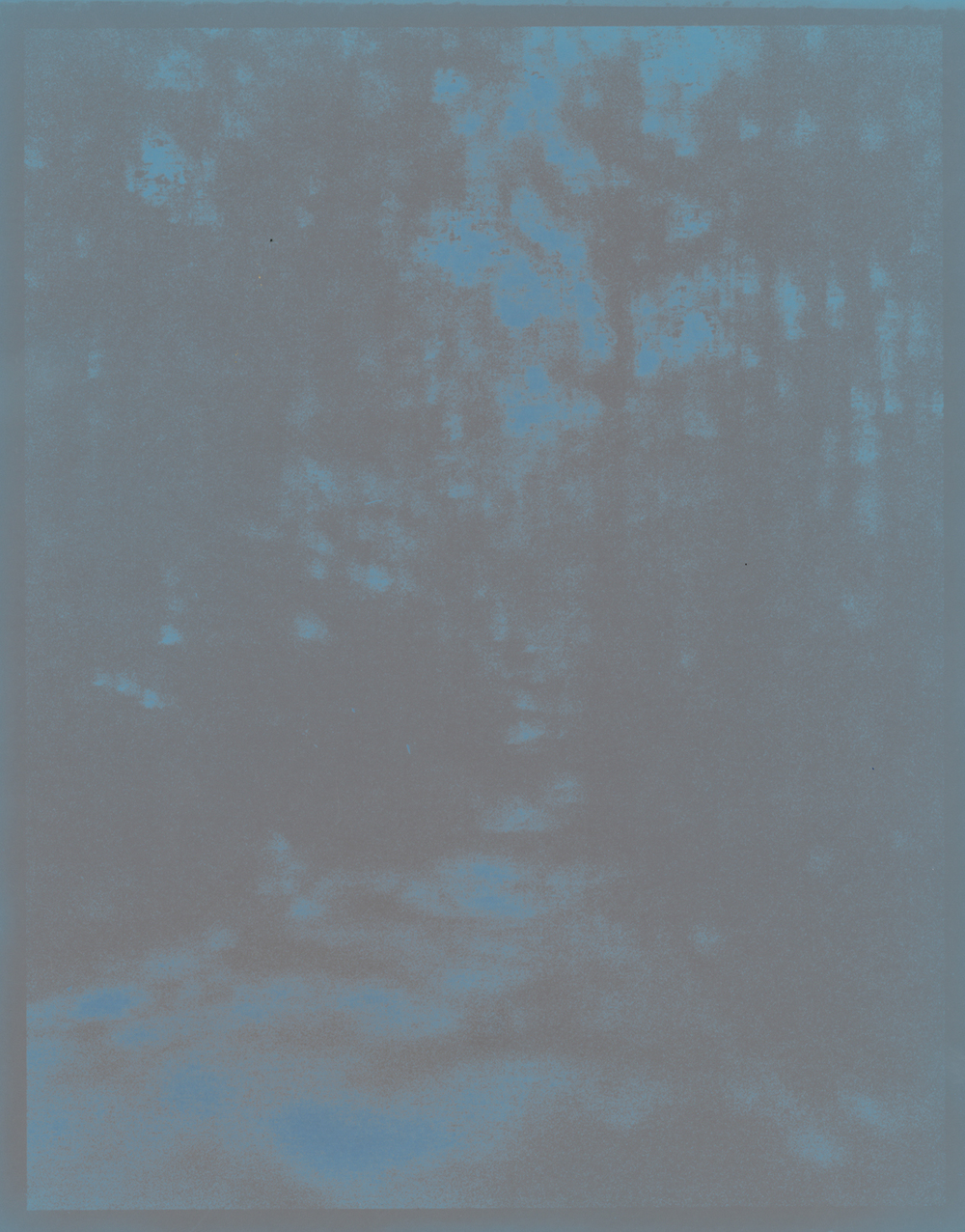 Rayko-fadingwoods01.jpg