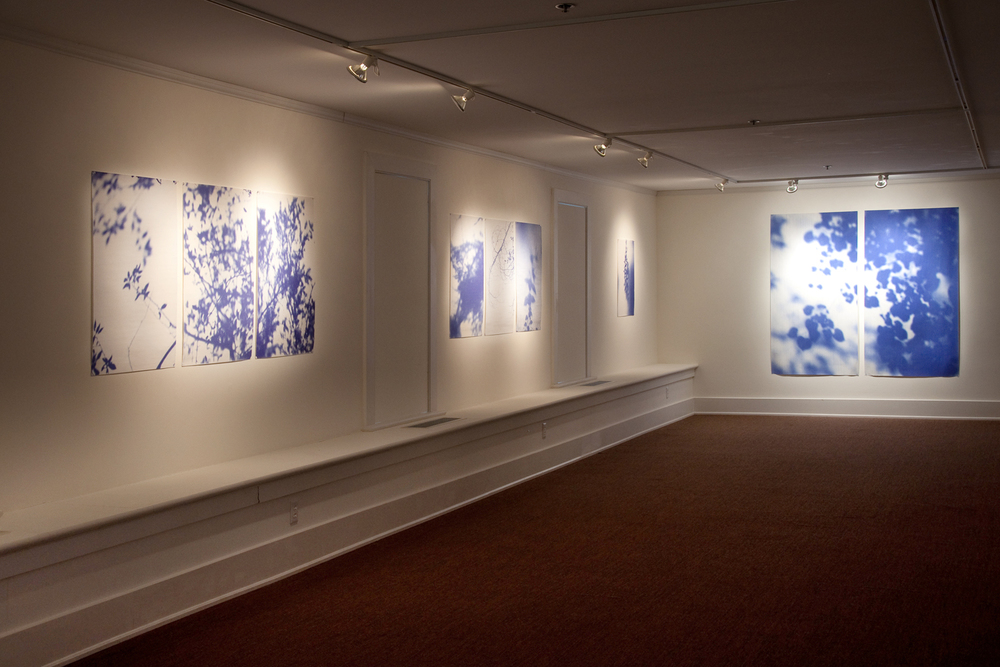 Blue Line of Woods (Glen Helen), installation view, 2014