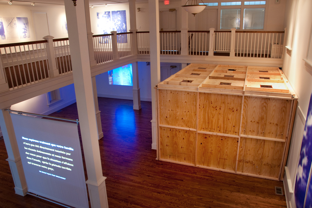 Installation view, 2014