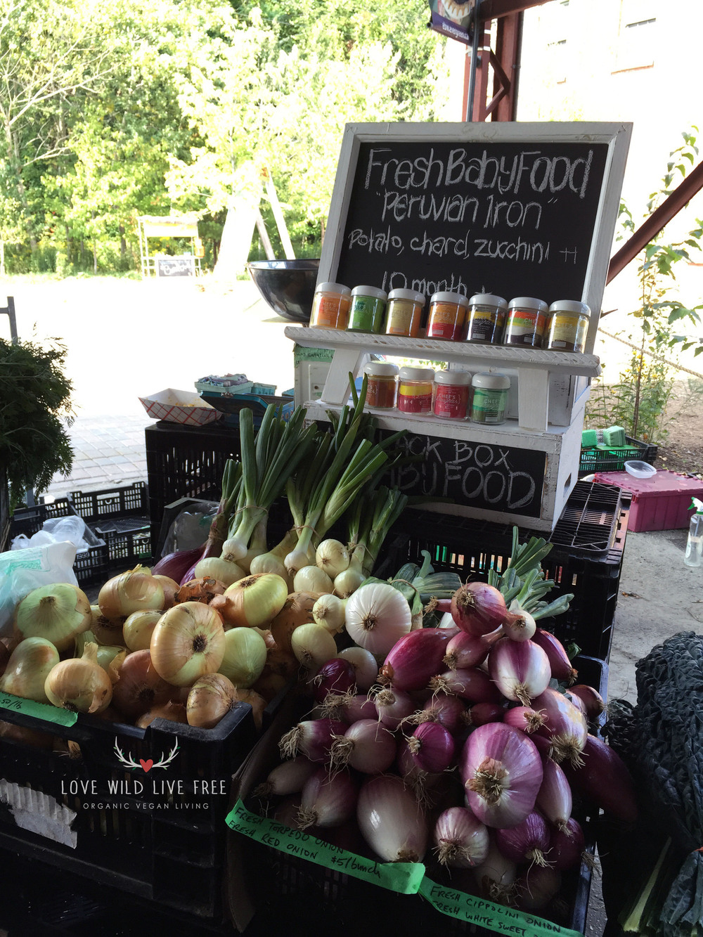 Grassroot Organics at Toronto's Evergreen Brick Works - they even sell fresh baby food!   Photo by LoveWildLiveFree.