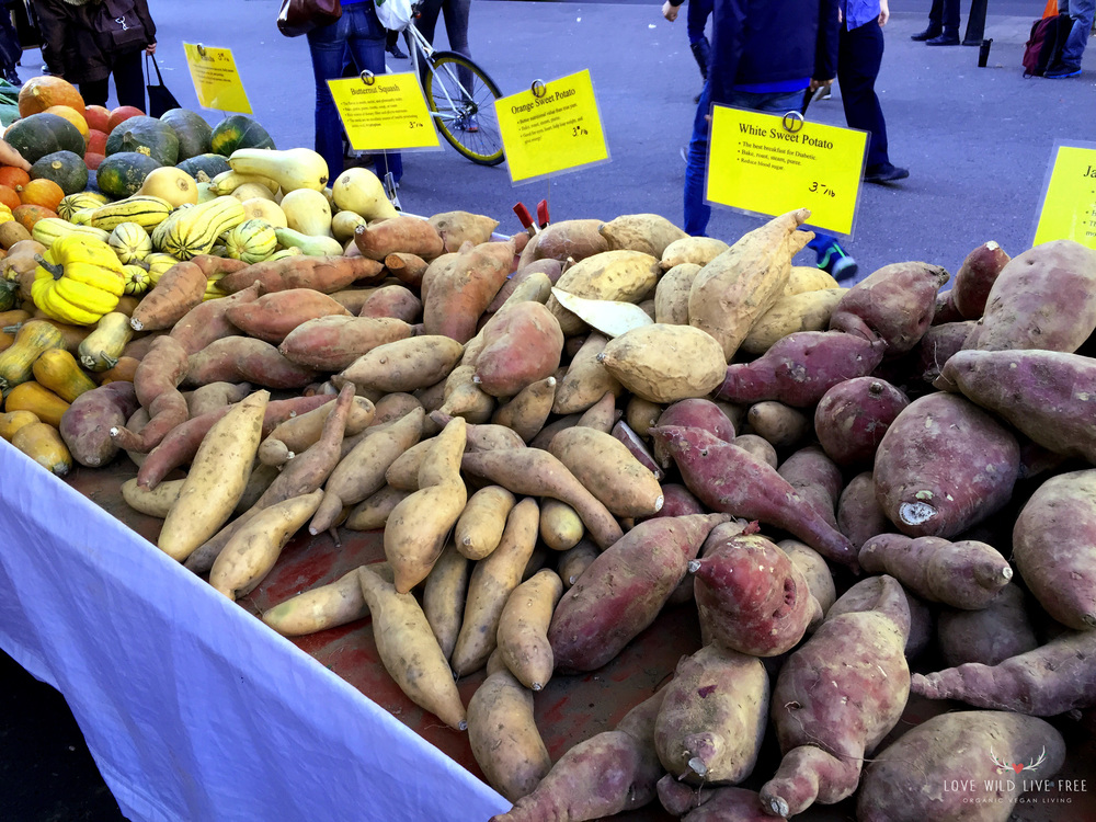 Fresh organic root veggies and squashes from Lani's Farm at GrowNYC's Greenmarket in Union Square. Photo by Love Wild Live Free.