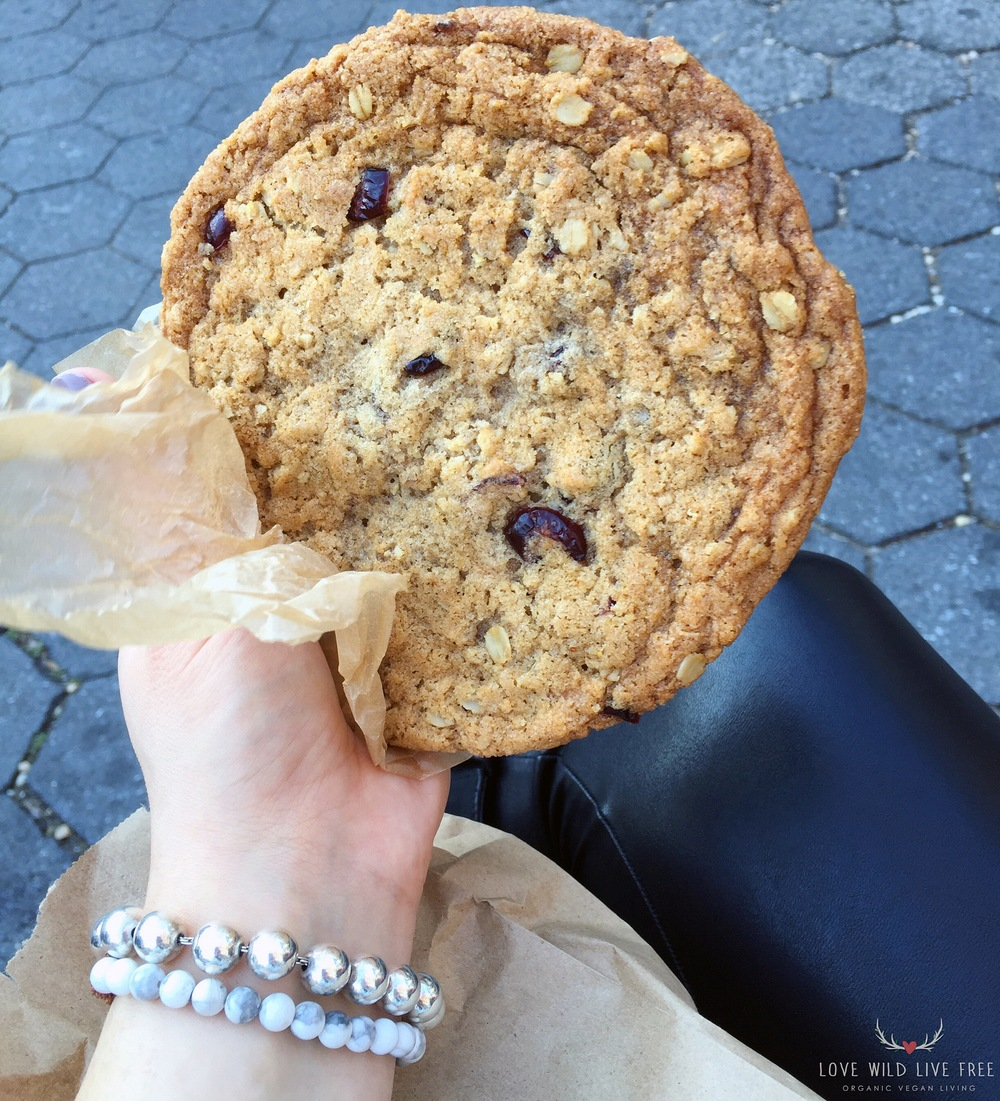 Vegan Cranberry Oatmeal Cookie from Body and Soul Bake Shop at GrowNYC's Greenmarket in Union Square. Photo by Love Wild Live Free.