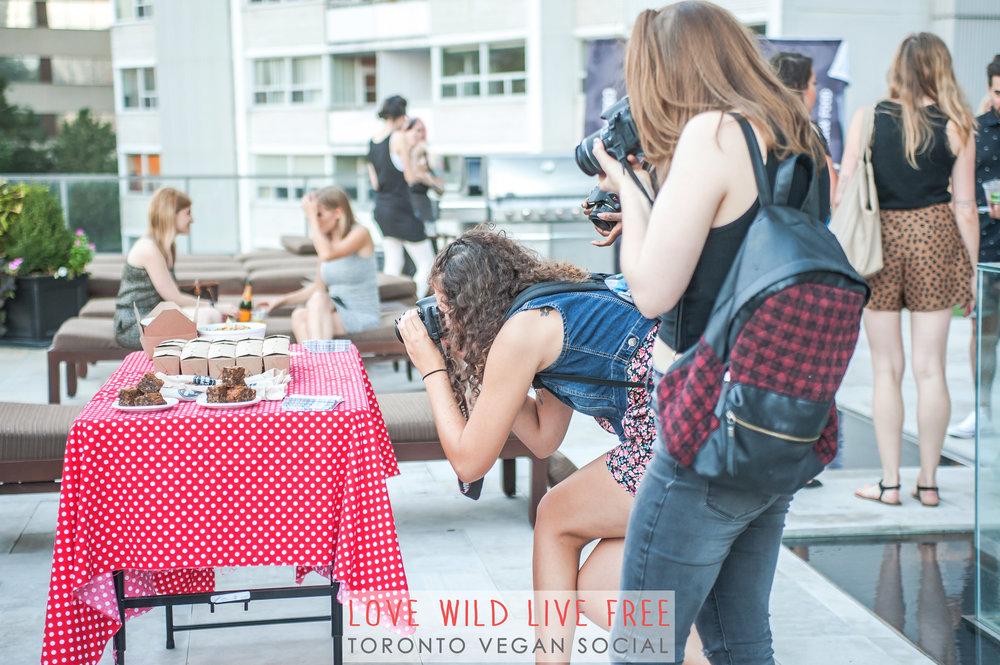 Love Wild Live Free Vegan Social