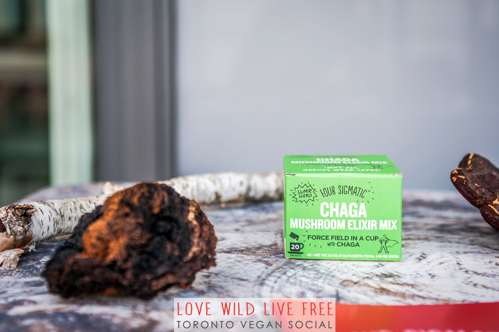 Four Sigmatic's Chaga Mushroom Elixirs was served at the Toronto Vegan Social and guests took home instant chaga in the gift bags too! I've got a special promo code for Love Wild Live Free Readers - enter code LOVE for 10% off on Four Sigmatic's website! Photo by: LOF Photography.