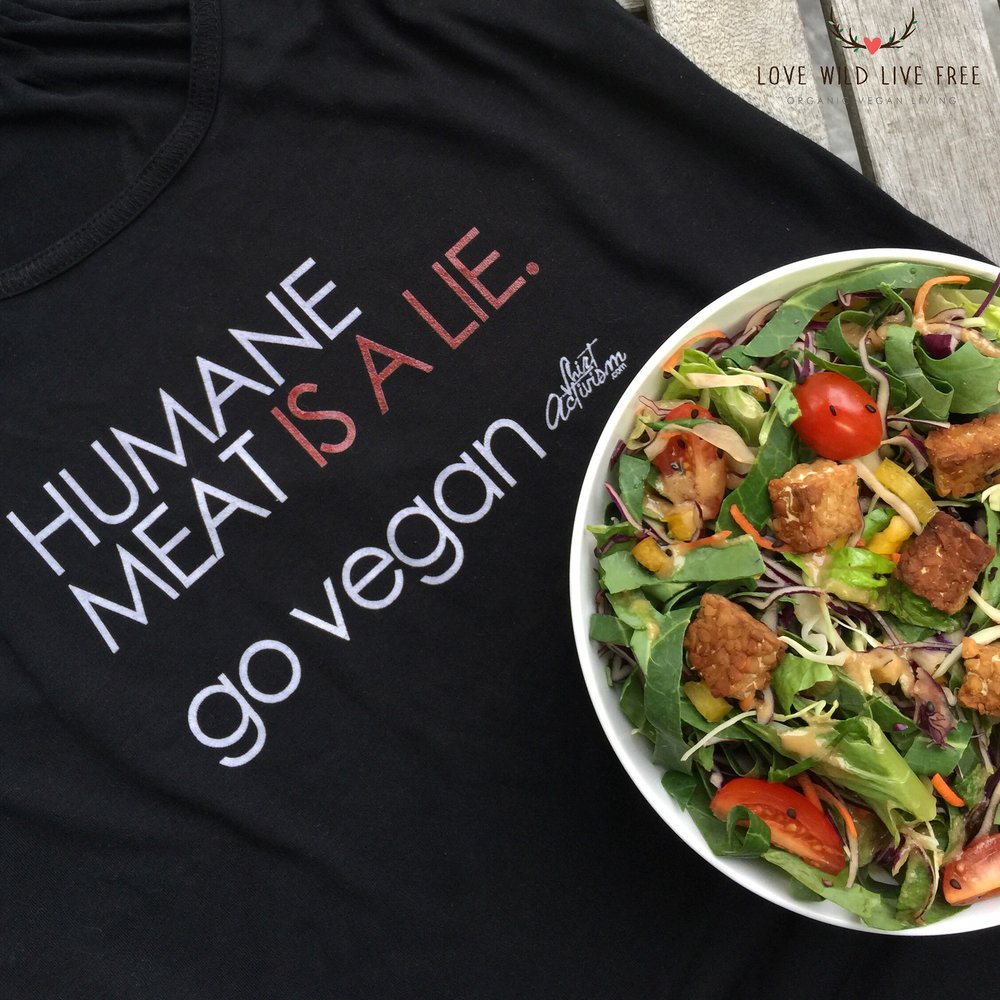 "Pictured above, ""HUMANE MEAT IS A LIE. go vegan."" ladies racerback tank top from Shirt Activism Apparel."