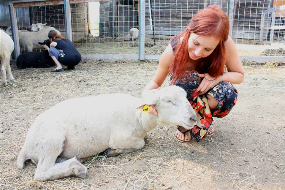 Kimberly Carroll at Wishing Well Sanctuary.  Photo courtesy of Kimberly Carroll.