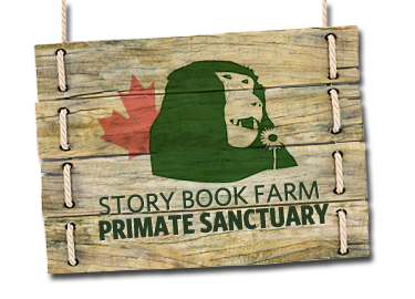 StoryBookFarms-logo.png