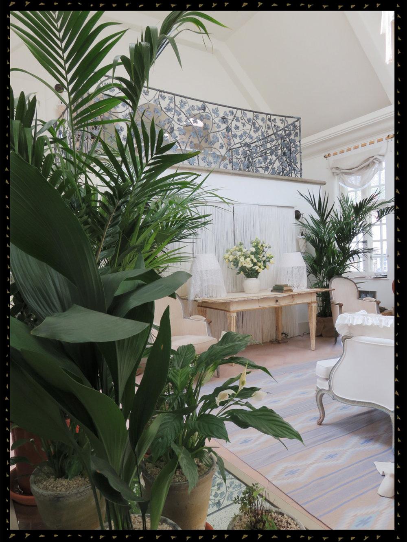 boudoir IMG_6173.jpg