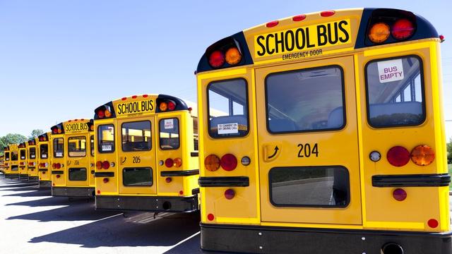 school buses yellow