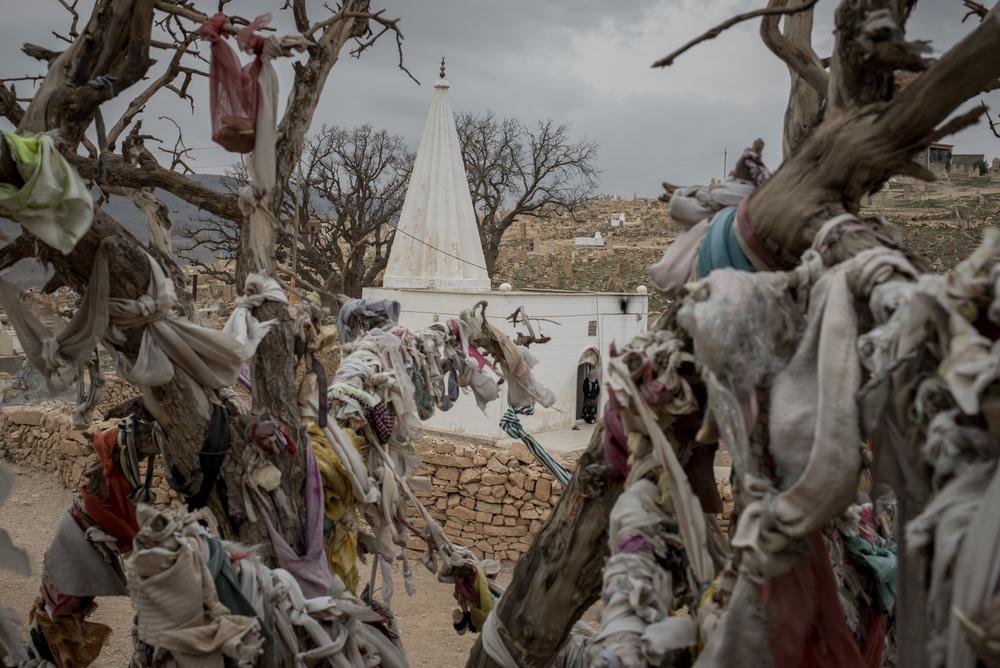 yazidis-cengizyar-008.jpg