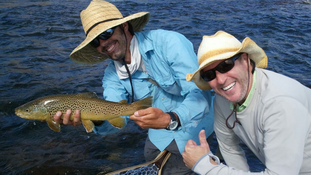 Beautiful Brown Trout in Montana