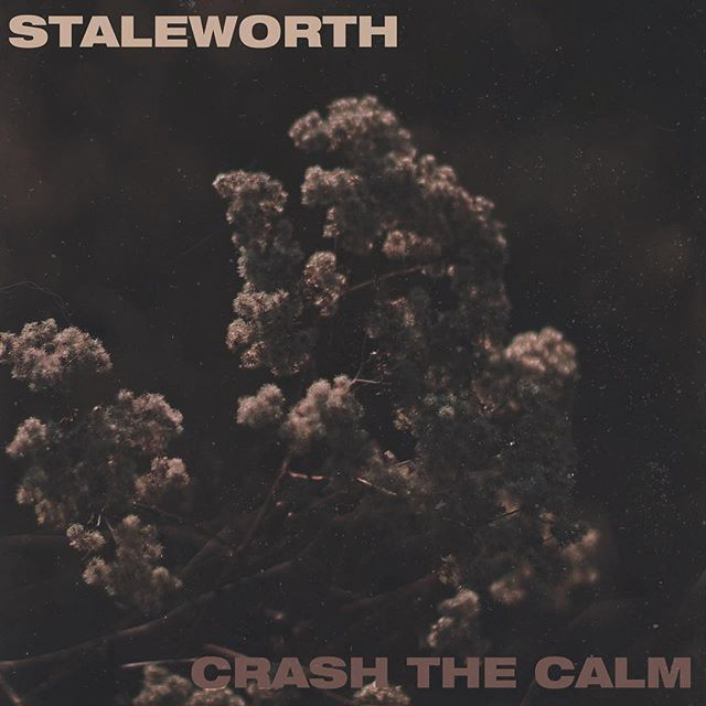 We're a day away from the release of the @staleworth_ & @crashthecalmband Split EP - make sure to follow them both to get all the updates!