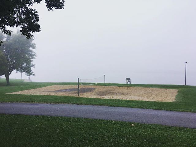Frog alert. I mean fog alert. Frog alert? Right, fog alert. #jamesmadisonpark