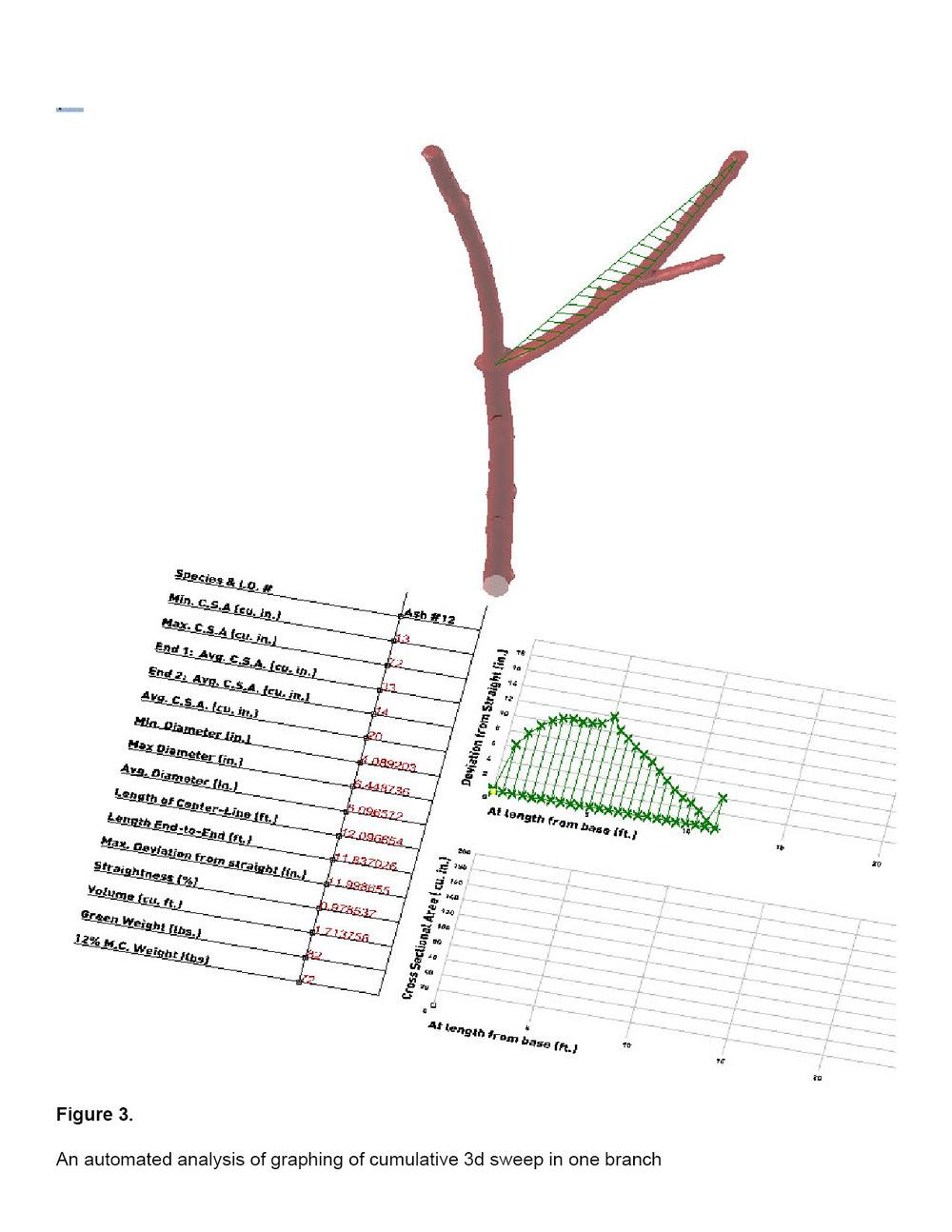 Tree_12_Spec8.jpg