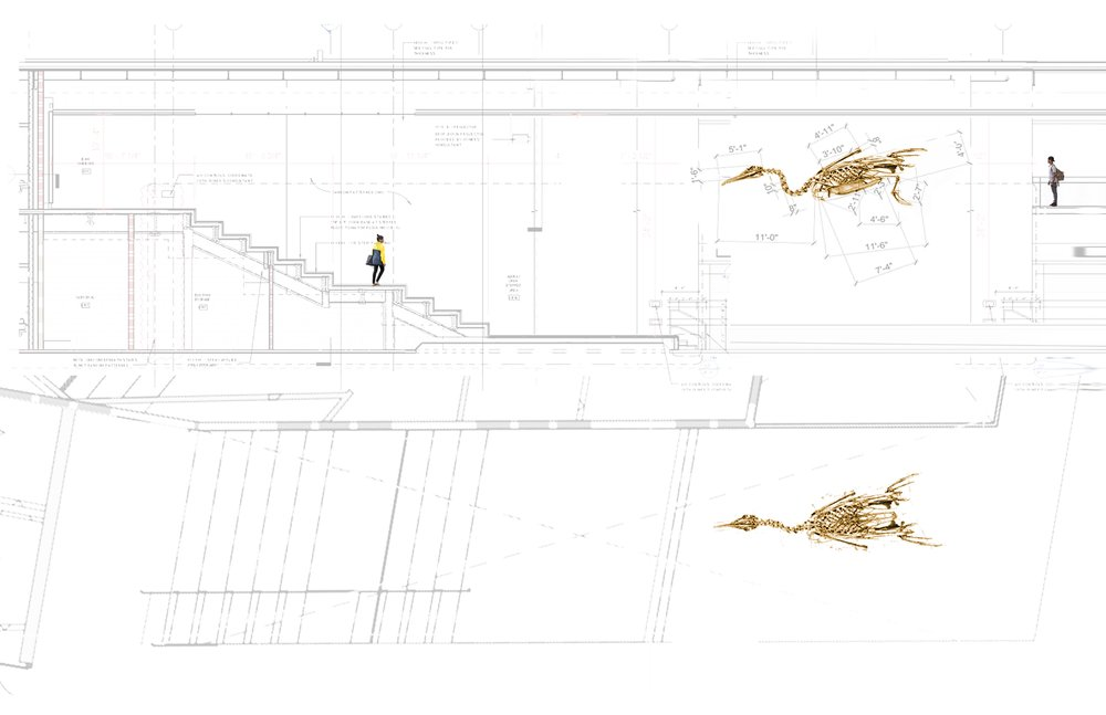 Sketch Collage, Plan and Section.
